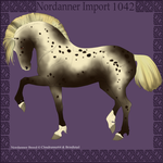 1042 Group Horse Import by Cloudrunner64