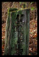 old man stumpy by photom17