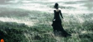 In the fields...          gothic by S-T-A-R-gazer