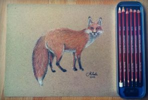 Fox drawing by red-fox-child