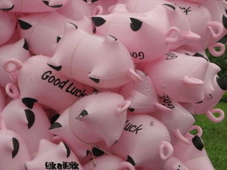 good luck in this pigs year by skaisik