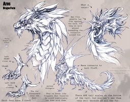 Aros Dragon Ref by bezzalair