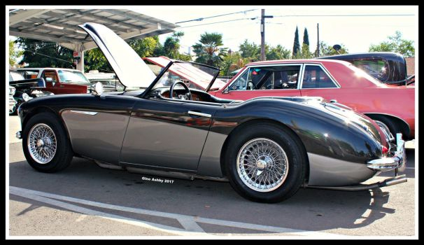 Austin Healey by StallionDesigns