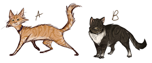 Two Cat Adoptables by JadeRavenwing
