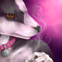 Cesar icon by biostasis