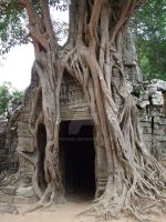 Temple in Angkor Wat by Chenyi87