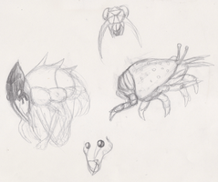 Mole Crab Creatures  by Lucern7