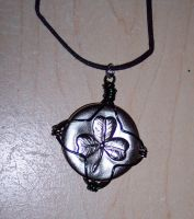 Wire Wrapped Pendant by cionbird