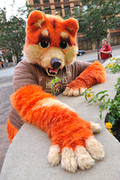 Toki at Anthrocon! by bawky