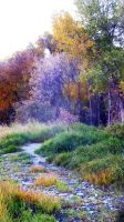 Magical Autumn by jesuslover488448