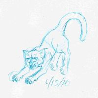 Cat claw sketch by Orsonfoe