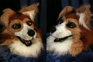 Realistic Collie Head by Ifus