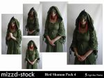 Bird Shaman Pack 4 by mizzd-stock