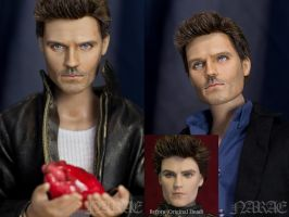 Hugh Laurie Repaint Doll by naraedoll
