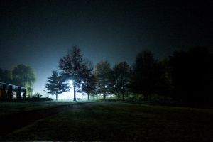 Mysterious Light by webworm