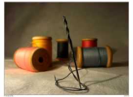 About needles and a thread... by firework