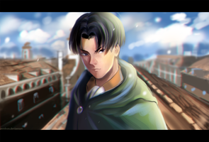 Levi by pershun