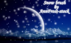 Snow brush by AnnFrost-stock