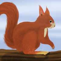 Are you nuts? by Sisa611