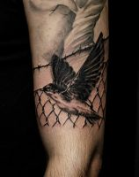 Archie Noodles Blackandgrey Swallow Realism Ta by HammersmithTattoo