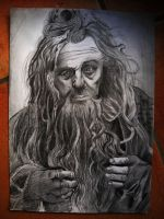 Radagast3 by alzamira
