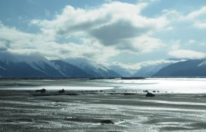 Alaska Ocean 14 by prints-of-stock