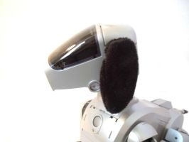 Aibo Cozies: Black by bunniesRawesome