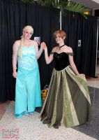 Metrocon 2014 8 by CosplayCousins