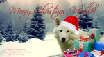 URP Christmas banner by AMelodyGoneWrong