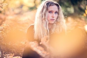 Herbstbriese by LisbethPhotography