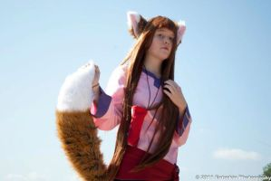 The Roaming Wolf by Foxy-Cosplay