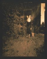 downtown with a rabbit head by kahoxworth