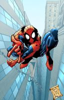 Here comes the Spider-man by bennyfuentes