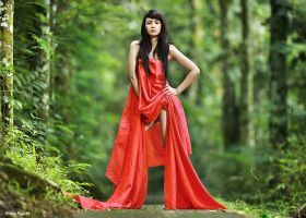 in Red by widjita