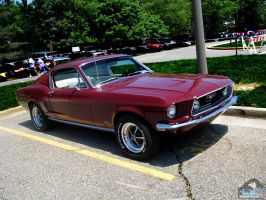 Red Mustang I by Koenken