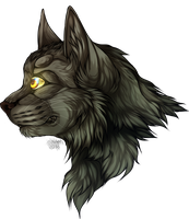 [Warrior Cats]Greystripe by NeCroven
