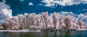 IR Pinsk Pina by Mithertiths