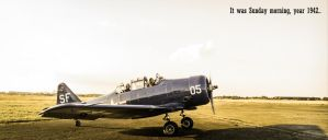 T-6 Texan by ColdMarch