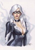 Black Cat by Sabinerich
