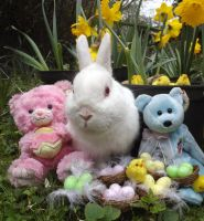 Easter Miffy by Candyfloss-Unicorn
