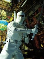 Storm Shadow - Stealth by Riebeck