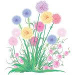 colorful bouquet floral plant by cgvector