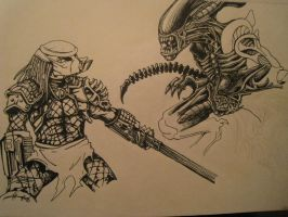 Alien vs Predator by r0binjonsson