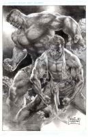 The Hulk and Wolverine by wolfpact