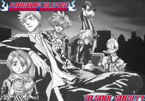 Bleach Meets Kingdom Hearts by Mobis-New-Nest