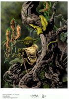 Yoda Swamp Dweller Coloured. by Highlander0423