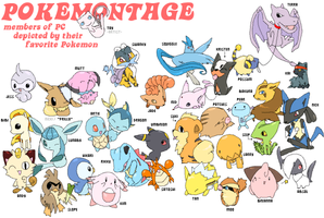 Pokemontage by drill-tail