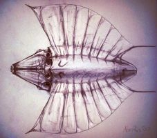 Zero G Life - Take 2 by Abiogenisis
