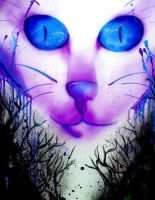 Bright Eyed Feline by decaymyfriend