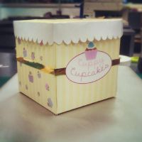 cuppy cupcake box design. by stephhabes